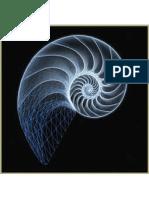 El proceso de duelo bajo el enfoque gestáltico.pdf