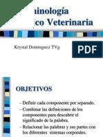 PROFA. K. DOMINGUEZ AVET 120  Terminología Médico Veterinaria