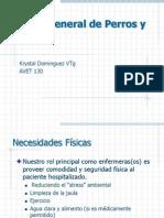 Profa. k. Dominguez Avet 130 Cuido General de Perros y Gatos