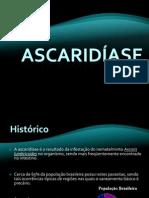 ascaridase-100408114643-phpapp02 (1)