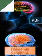 Neuroanestesia. Fisiologia