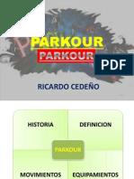 RICARDO CEDEÑO PERALTA DIAPOSITIVAS