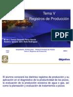 6.PP2008-2_TEMA_VI-Registros_de_Produccion.ppt