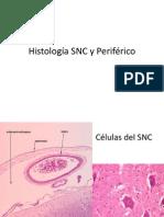 IMAGENES Histologia SNC y Perifrrico