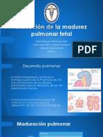 Induccion de la madurez pulmonar fetal