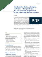 Clasificacion CEAP IVC.pdf