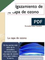 Adelgazamiento de La Capa de Ozono
