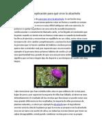 La mejor explicacion para qué sirve la alcachofa