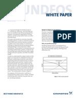Grundfos - white paper