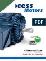 Process Motors