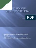 Embriologi Musculoskeletal (29 Mei 2012)