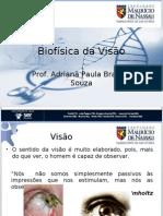 Biofisica Da Visao