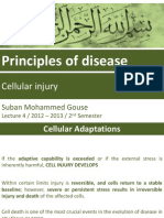 Cellular injury
