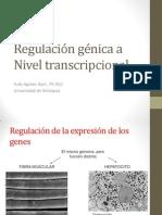 Regulación génica