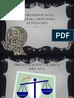 Neurofisiologìa