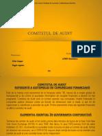 Comitetul de Audit