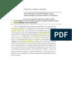 PERÍODOS DE LA HISTORIA DE LA AMÉRICA INDÍGENA.doc