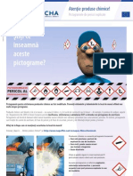 Pictograme Atentie Produse Chimice 2012