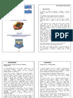 Manual Do Vigilante-PF