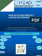 Niveles ecosistémicos y niveles de intervención ESC