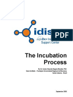 The Incubation Process (September 2003)