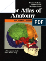 Color atlas of anatomy