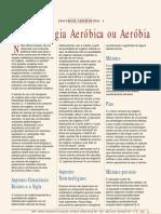 Terminologia aeróbica ou aeróbia