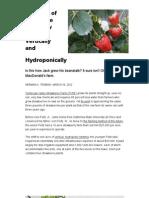 Strawberry hydroponic Farm