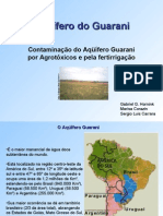 Aqui Guarani