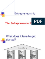 the entrepreneil process