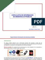Copia_ilícita_de_informacion