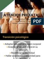 Atencion Prenatal