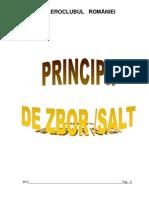 Principii de Zbor Salt