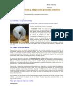 Las caracteristicas y etapas del proceso creativo.doc
