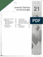 Texto 4 - O Pensamento Teórico na Sociologia