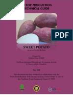 Sweet Potato Production Guide