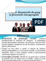 Grupul.definitii.tipologii