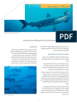 CITES FactSheet Scalloped Hammerhead Arabic