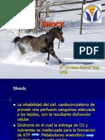Clase Medicina Shock Fluidos 2008 (1)