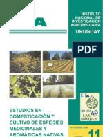aromaticas.pdf
