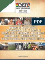 SIFDE Informe Tipnis (Version Resumida). 2012