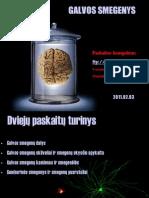 Galvos smegenys