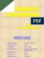 GHID DE RECUNOASTERE A PLANTELOR MEDICINALE