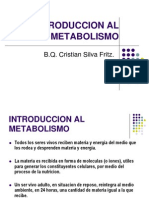 12 Introduccion Al Metabolismo