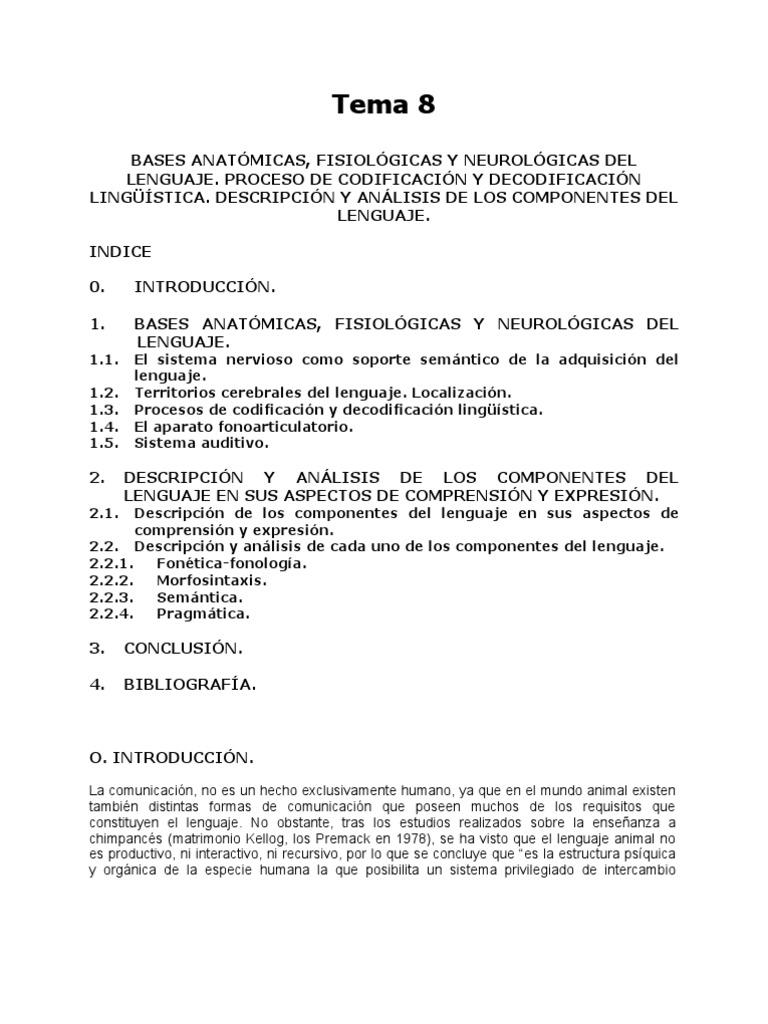 Vistoso La Anatomía Y La Fisiología De Neurología Fotos - Imágenes ...