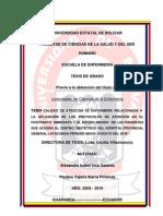 Tesis Calidad Enfermeria Atencion Protocolos