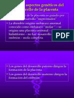 Clase 8C - Anatomia y Fisiologia de La Placenta