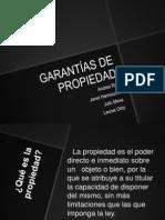 GARANTÍAS DE PROPIEDAD