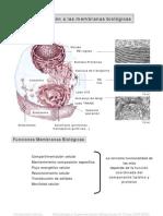 Teoriametod4.PDF Bioquimica