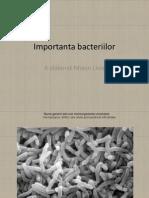 Importanta bacteriilor